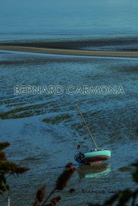 ©2016 B.CARMONA PLERIN 4