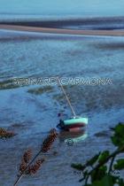 ©2016 B.CARMONA PLERIN 6