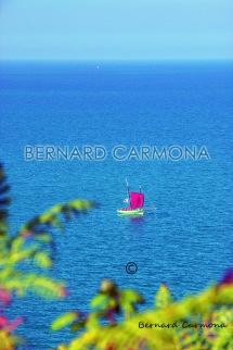©2016 B.CARMONA PLERIN 1