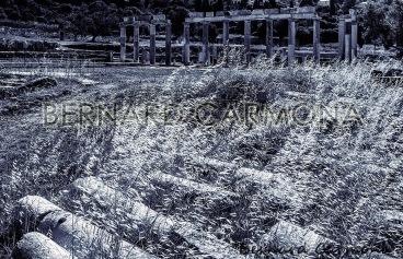 ©2016 B.CARMONA MESSENE 7