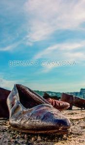 ©2016 B.CARMONA BUDAPEST 8